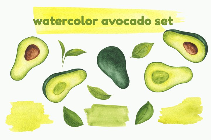 Watercolor avocado set