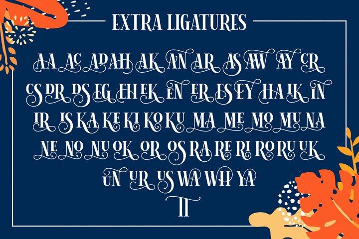 Herina Font example 4