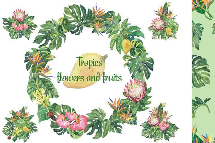 Tropical clipart. Tropical leaves. Fruits and flowers