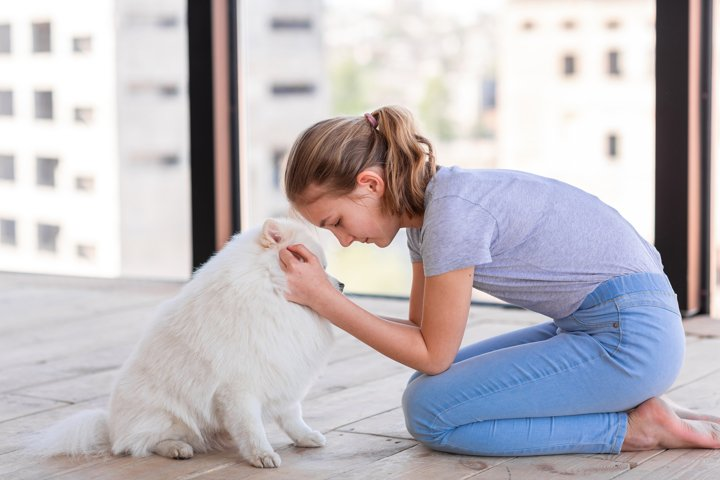Cute teenage girl training her spitz dog at home