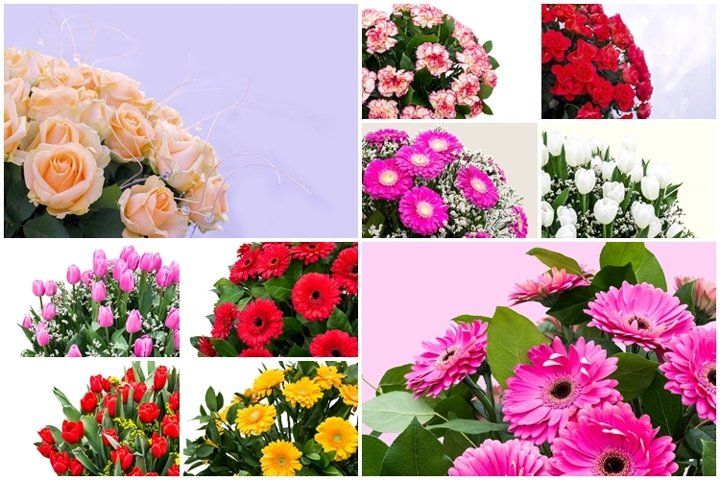 Luxurious bouquets of roses, gerberas, tulips, carnations
