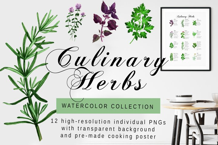 Kitchen Herbs - Watercolor collection