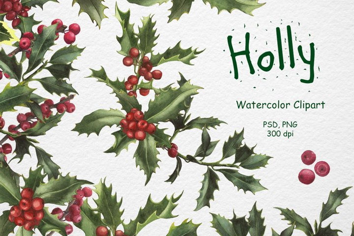 Watercolor Holly Clipart. Christmas decorations.