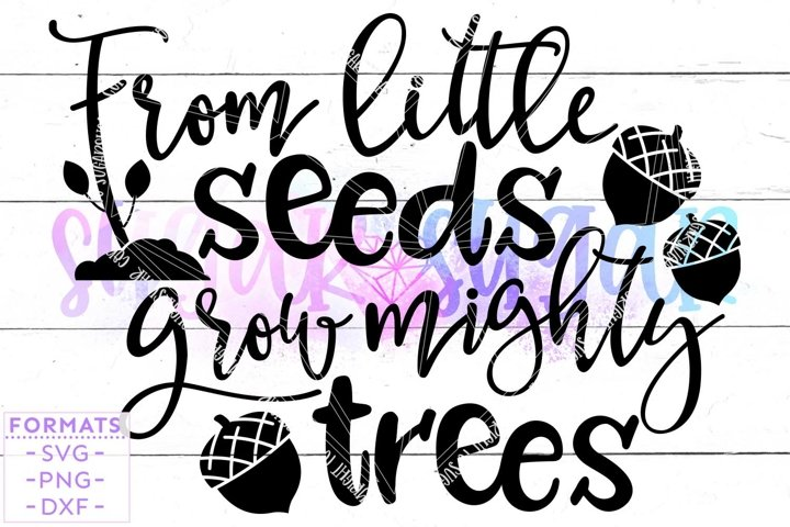 From Little Seeds Grow Mighty Trees svg Files for Cricut