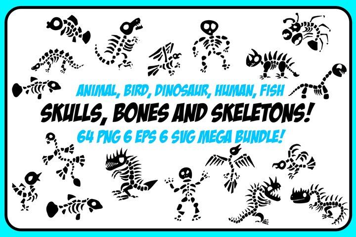 Dinosaur Animal Fish Bones and Skeletons! Bundle 64 Images!