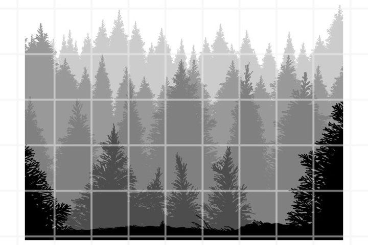 Forest SVG. Forest cut files. Woodland cutting set. Vector.