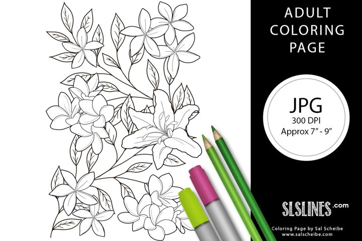 Beautiful Flowers Lillies Adult Coloring Page