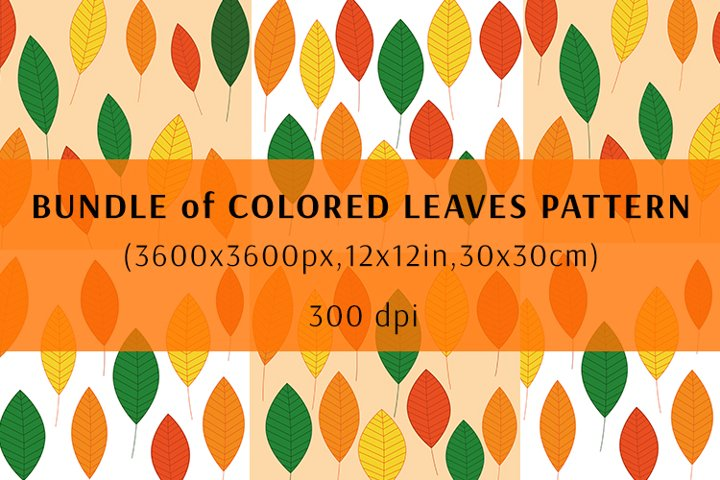 Bundle of Colored leaves pattern