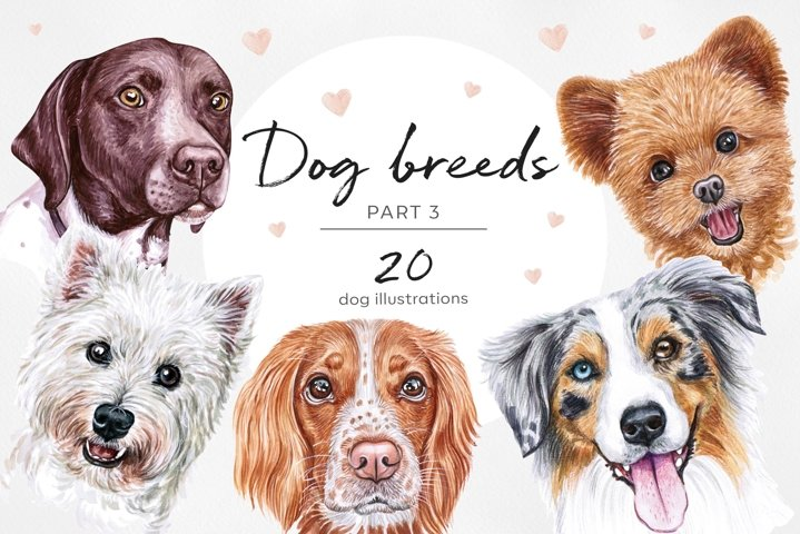 PART 3. Watercolor illustration set DOG breeds. Cute 20 dogs