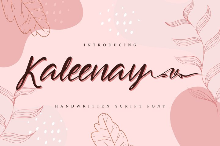 Kaleenay | Handwritten Script Font