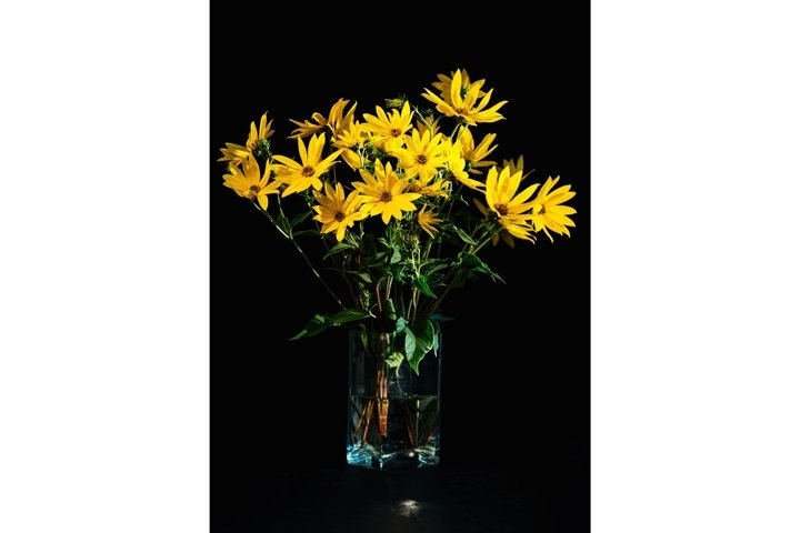 Bouquet of bright fresh yellow flowers on black background