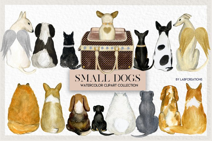 Dogs. Small Breeds. Accessories for Dog. Watercolor clip art