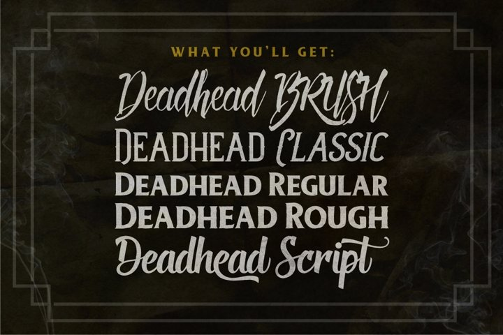 Deadhead Typeface Family - Free Font of The Week Design0