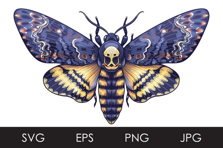 Deaths-Head Hawk Moth SVG, PNG
