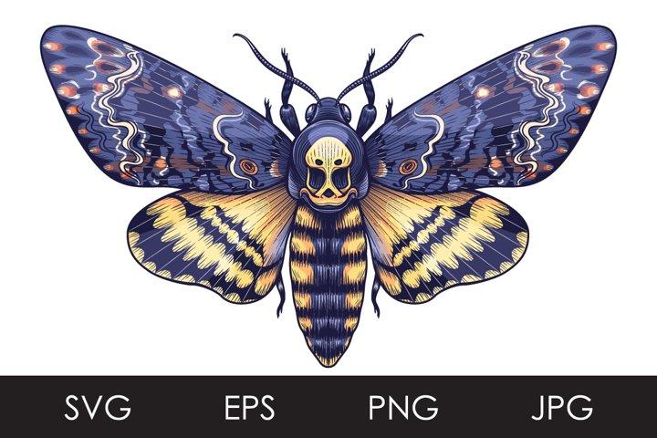 Deaths-Head Hawk Moth SVG, PNG