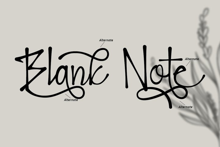 Blank Note - Ink Handwritten Font example 2