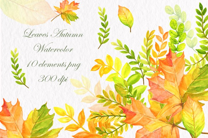 Autumn leaves clipart watercolor clipart hand painted autumn