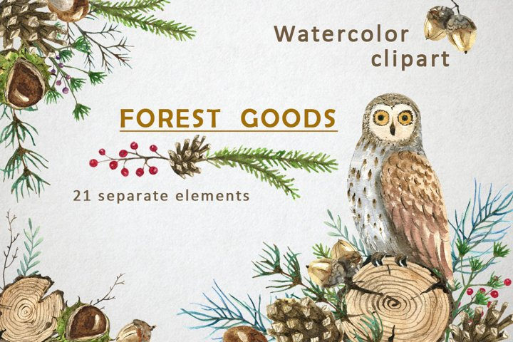 Watercolor owl, winter forest clipart, wooden slice
