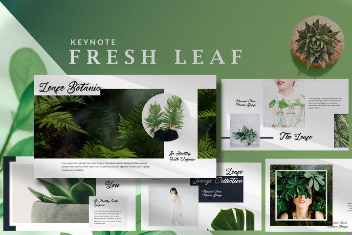 Minimal Fresh Leaf - Nature Keynote Template