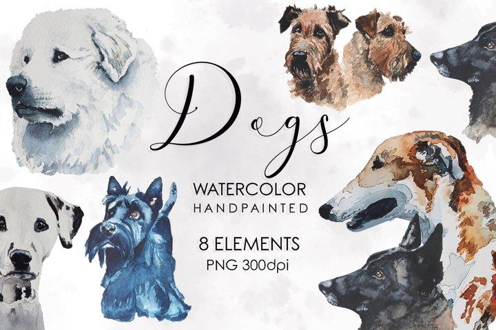 Dog Clipart, Pet, Dog Bundle, Watercolor Bundle, dog breeds