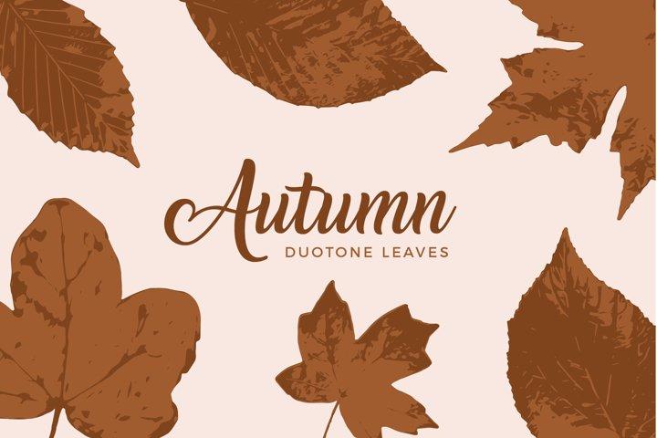 Fall Leaves Clip Art - Duotone SVG Leaves