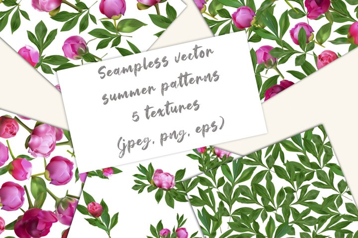 Set of vector pink peons, patterns, frames, bouquets