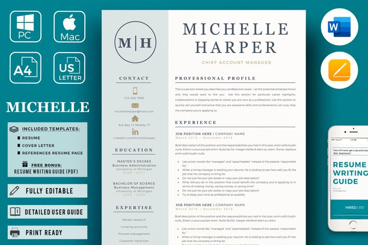 Sales Resume. Account Manager Professional Resume CV format