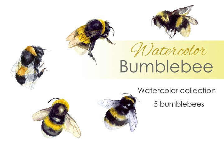 Watercolor Clipart. Bumble Bee art. Bee clipart
