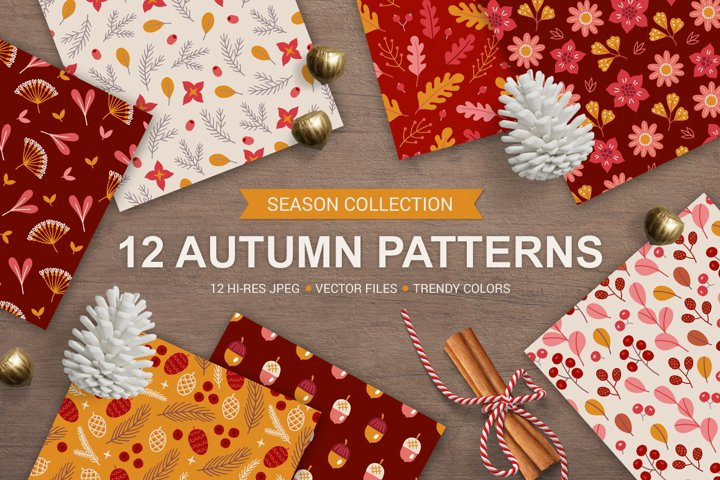 12 Autumn Seamless Patterns