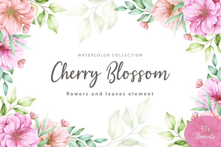 Watercolor Cherry Blossom flowers and leaves elements