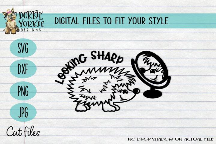 Looking Sharp Hedgehog, Funny, Mirror, Pun, Cute - SVG