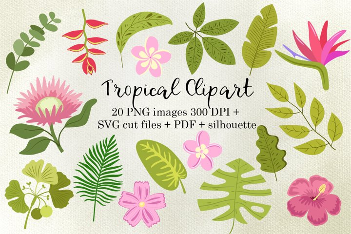 Tropical Flowers and Leaves PNG, SVG for cutting and PDF