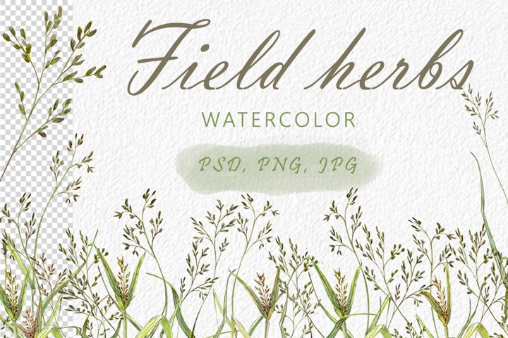 Field herbs.