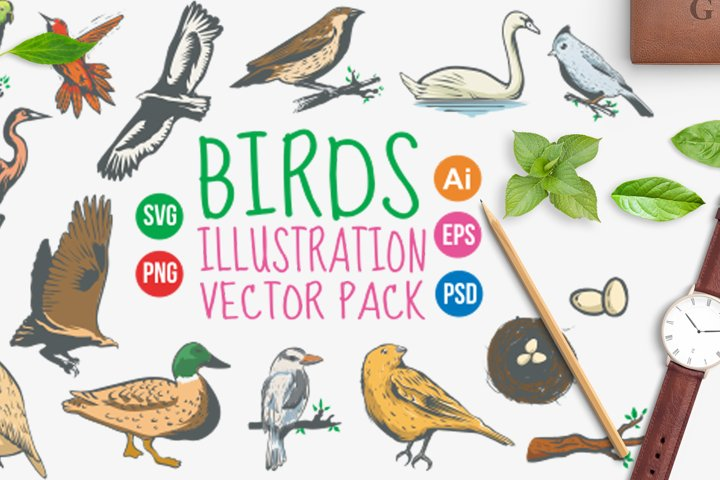 Birds Vintage Hand Drawn Vector Pack