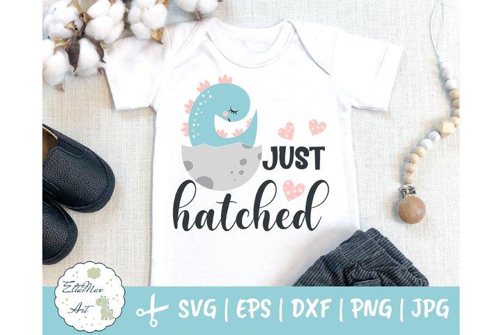 Just hatched SVG, Dinosaur svg, baby boy SVG, Newborn svg