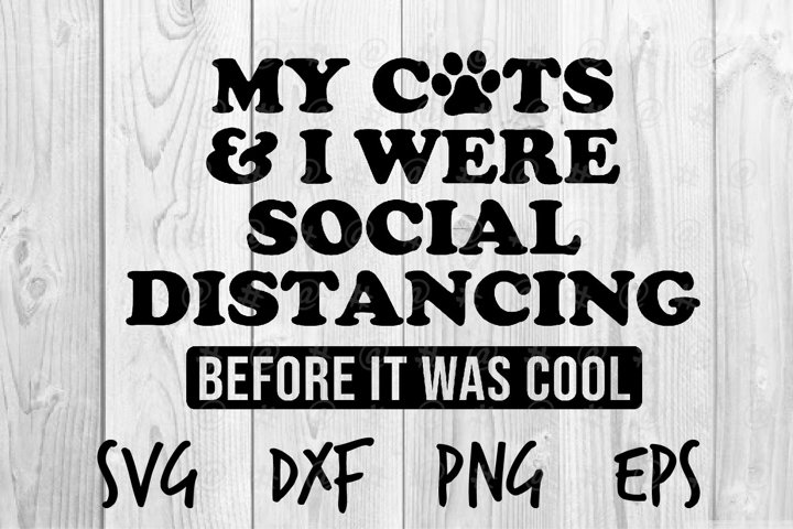 My cats I were social distancing before it was cool SVG
