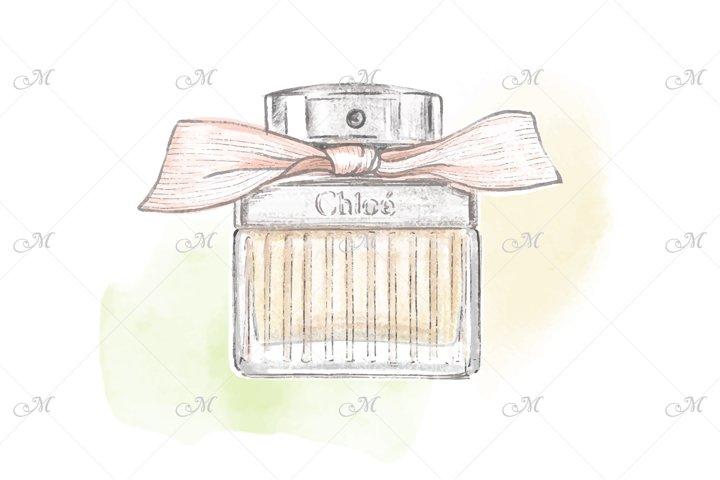 Perfume Bottle hand drawn Illustration