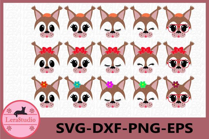Squirrel Face SVG, Animal face svg, Squirrel Eyelashes Face
