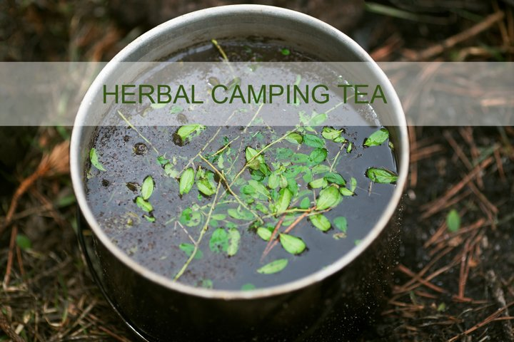 Forest camping herbal tea with green leaves, prepared in pot