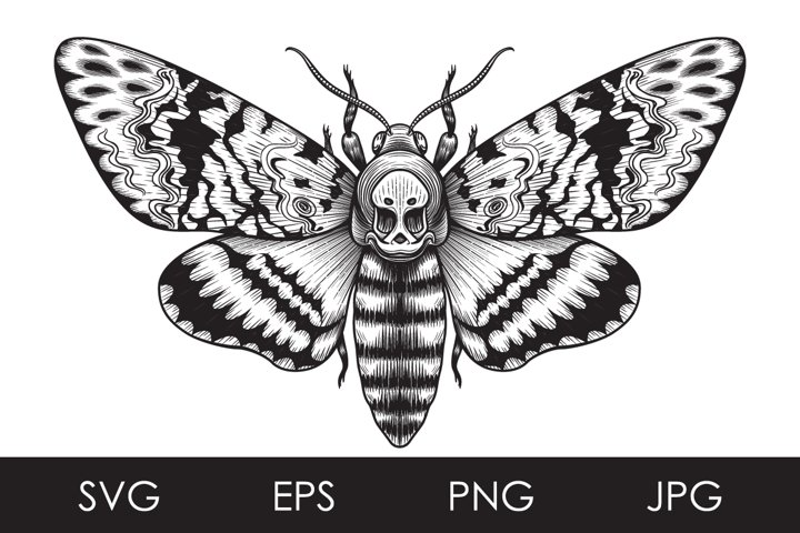 Monochrome Deaths-Head Hawk Moth Butterfly SVG, PNG files