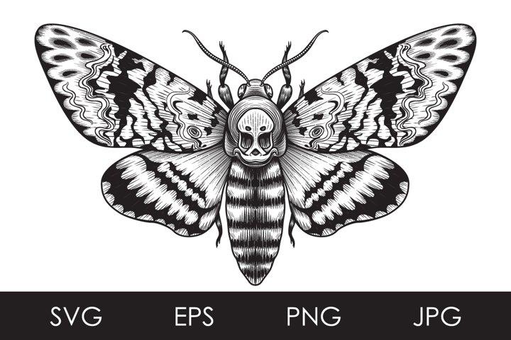 Monochrome Deaths-Head Hawk Moth Butterfly SVG, PNG files