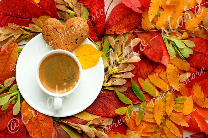 Americano coffee cup with autumn bright leaves, fall season
