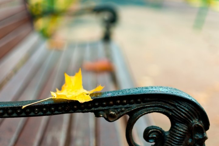 Bench on which lies a yellow maple leaf. Autumn concept.