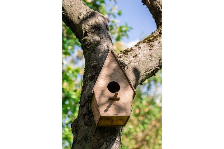 the birdhouse on the tree