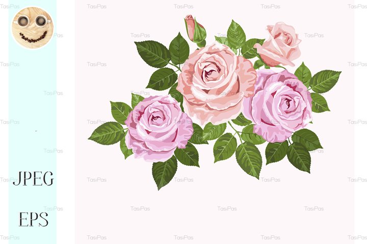 Pink and beige vector roses with green leaves