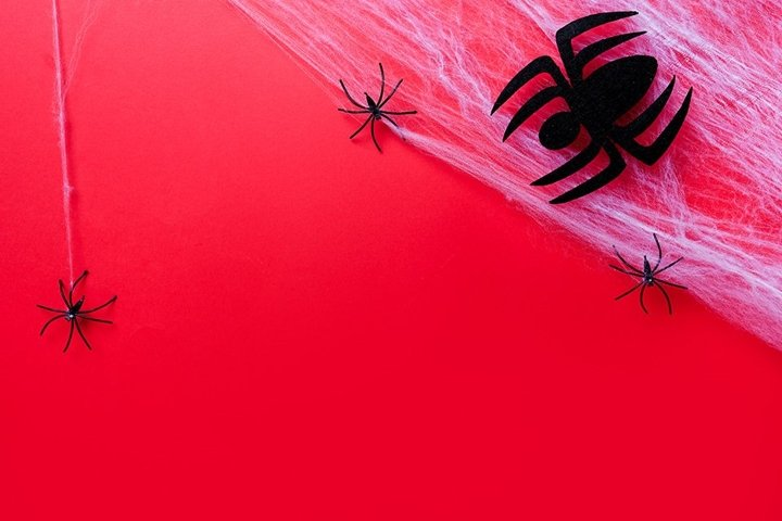 Halloween holiday concept. red background with spiders