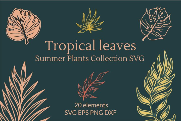Tropical leaves, summer plants Collection SVG graphics