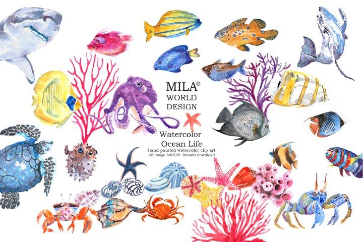 Watercolor Ocean Life clipart