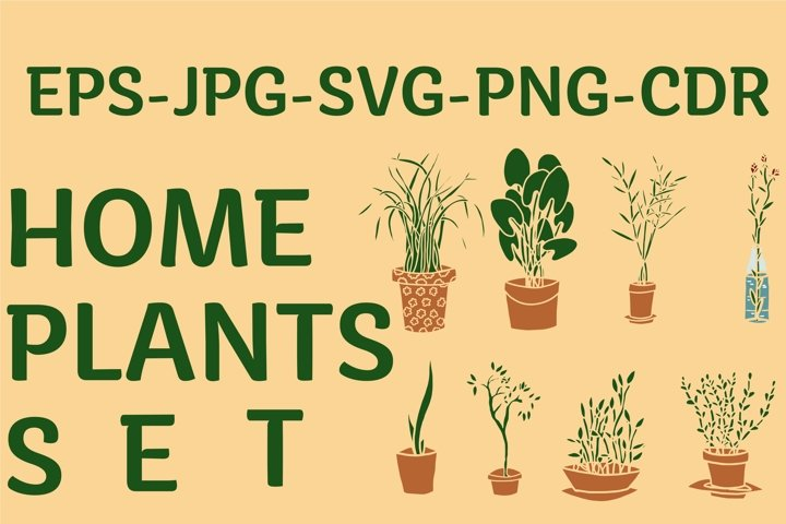 Home plants set - 16 illustrations