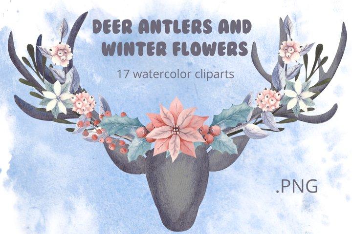 Deer antlers and winter flowers.